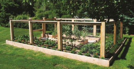From Yard to Table.  A garden from Homefront Farmers.  How fabulous is that!