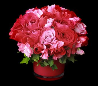 There is still time to get beautiful arrangements for the one you love.  Neilson's is doing a fabulous job. Check out their shop here in town.
